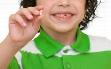 Por que você deve guardar os dentes de leite do seu filho