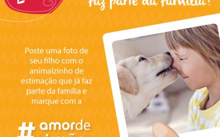 Já está no ar o 2º Desafio Brandili #AmorDeIrmão!