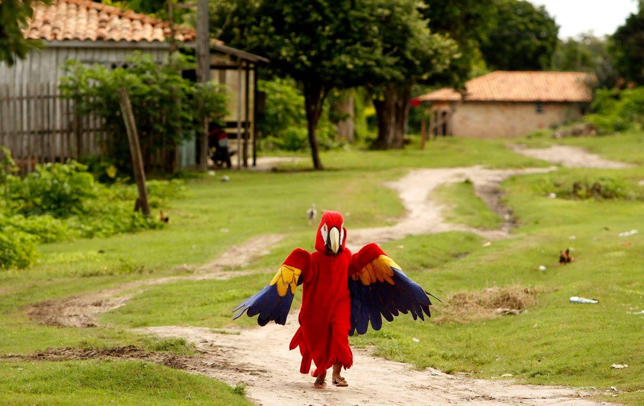 Carnaval na Floresta: crianças se fantasiam em homenagem aos animais da Amazônia